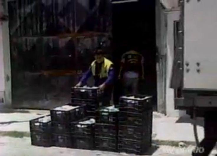 23/10/2014 - Visa de Fortaleza interdita indústria de alimentos