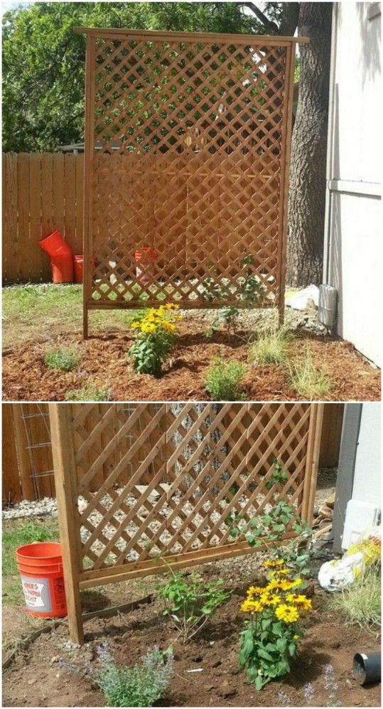 Attrayant 20 Easy DIY Trellis Ideas To Add Charm And Functionality To Your Garden