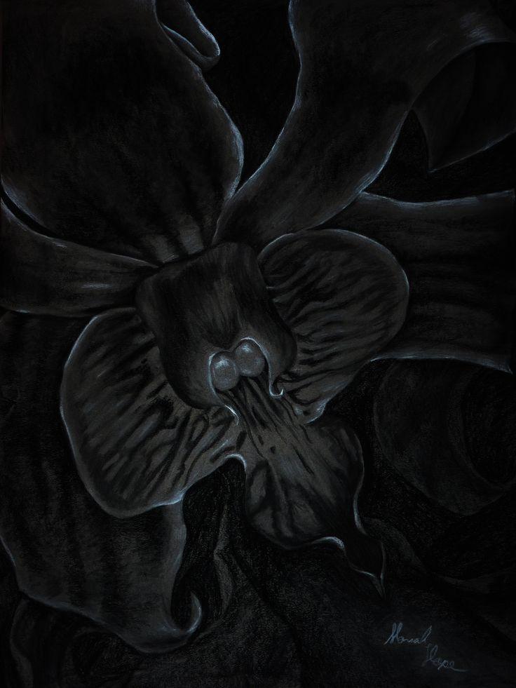 """Terrestrial"" By Moriah Hengst Charcoal"