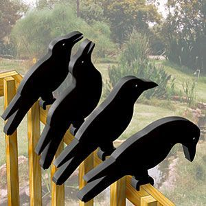 """Crow Shadow Rail Sitter Patterns. Now you have something to build with all that scrap wood (2X6) you have piling up in the workshop. Feet designed to fit over a 1-1/2"""" thick railing. Approx 17"""" long (one crow). Parts Req'd: Eyes (8) E-515. Pattern #2094 $8.95 ( crafting, crafts, woodcraft, pattern, woodworking, yard art, animal, bird ) Pattern by Sherwood Creations"""