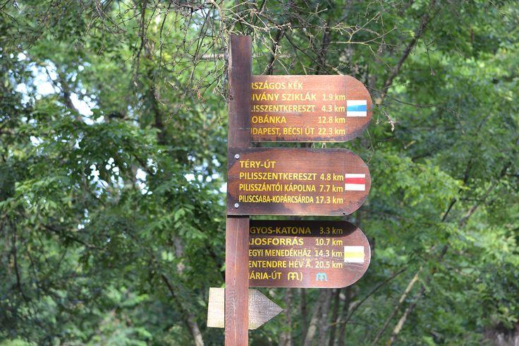 DOBOGÓKŐ TÚRÁK Dobogókőn áthalad az Országos Kéktúra (kék sáv), illetve megközelíthető innen a Lajos-forrás (sárga sáv, és áthaladt a hegycsúcson a Téry-ú, amely a környék középkori kolostorromokon visz végig.