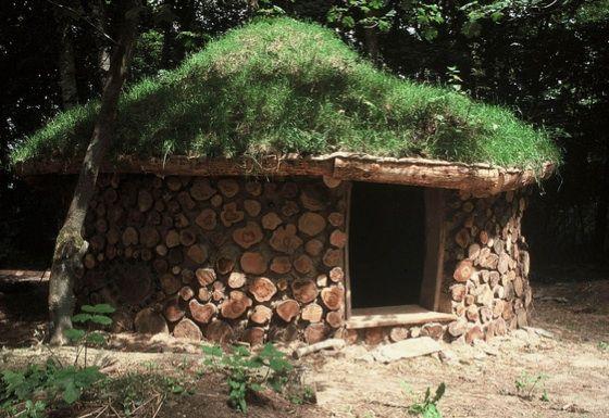 A most unique garden/office shed!