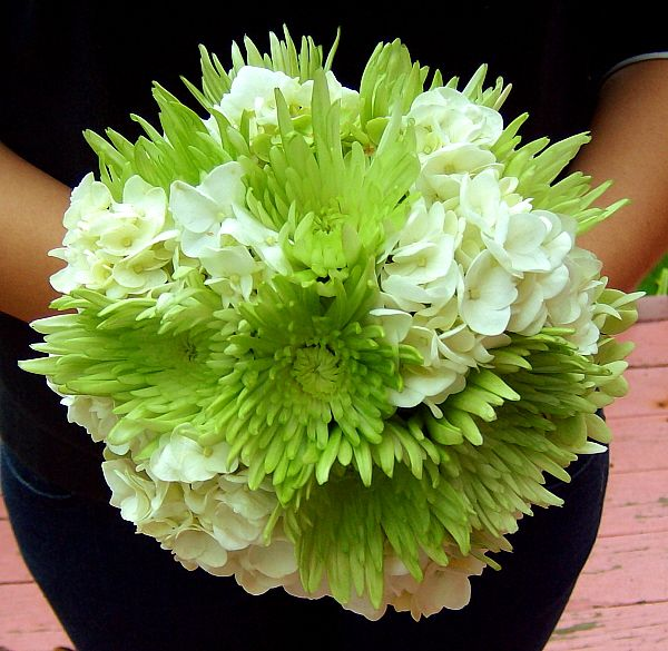 Hydrangea and Spider Mum Bouquet