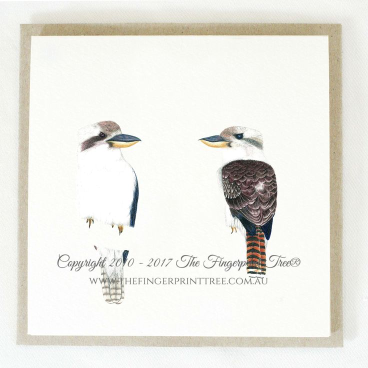 Gift card - Kookaburra's:  Cards! by The Fingerprint Tree® is our couture range of gift cards featuring illustrations by Ray Carter, Chief Artist & Founder.  Made-to-order and Giclée printed at our Southern Highlands studio.   We sell direct to the public and to retailers.