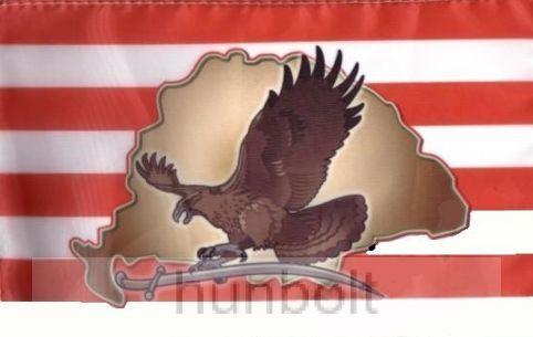 Árpádsávos turulos zászló