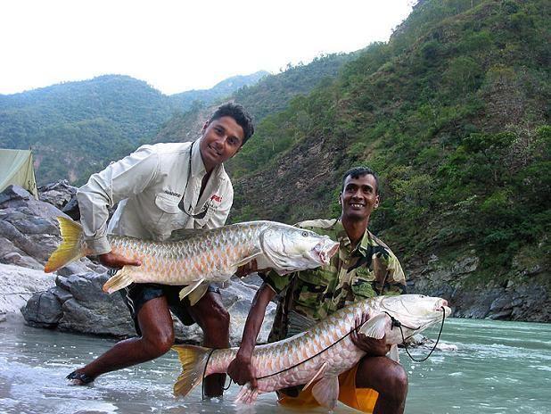 Fishing in Palampur for Mahasheer