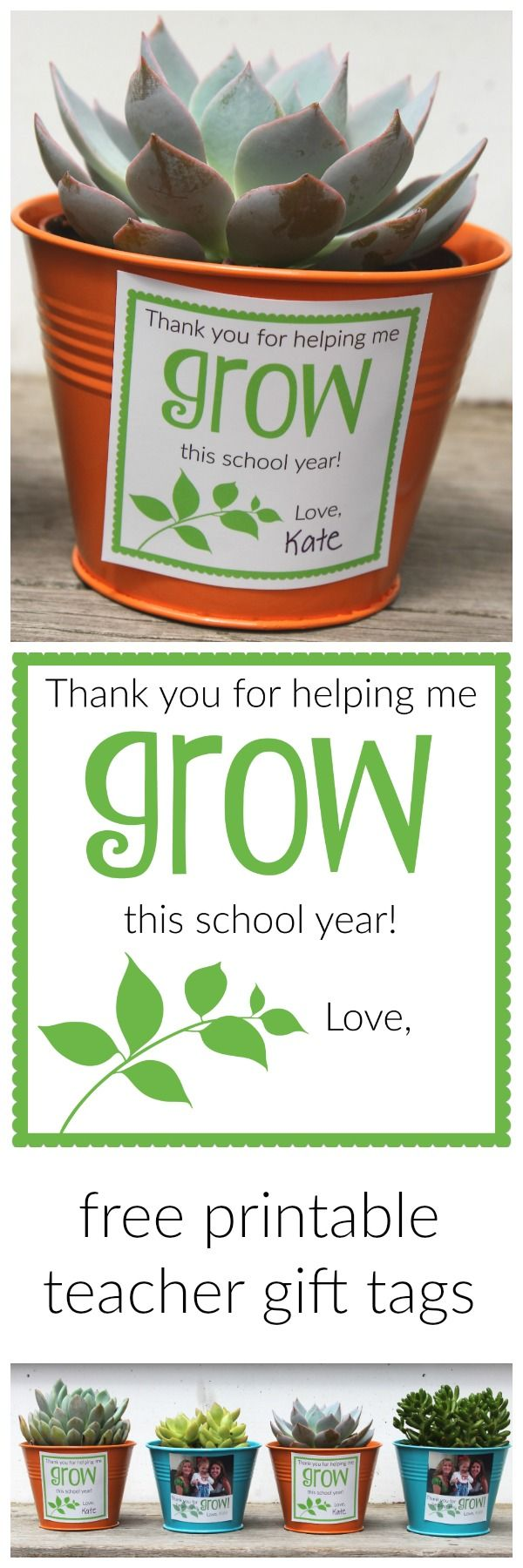 "Teacher appreciation week ""Thank You for Helping Me GROW"" succulent tags."