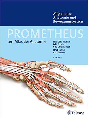 Allgemeine Anatomie und Bewegungssystem Prometheus: LernAtlas der Anatomie: Amazon.de: Michael Schünke, Erik Schulte, Udo Schumacher: Bücher