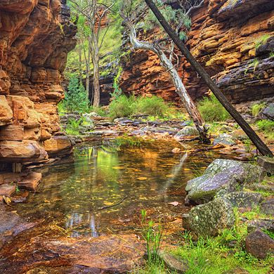 Alligator Gorge, South Australian National Park