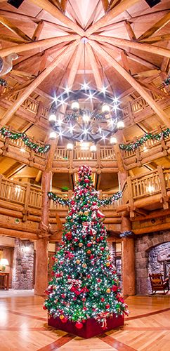 Want to enjoy Disney World Christmas decorations without using your Disney World park ticket? Take the Walt Disney World Yuletide Tour at Christmas. It'll take you through the resorts that are best-decorated for Christmas, plus...it's FREE!