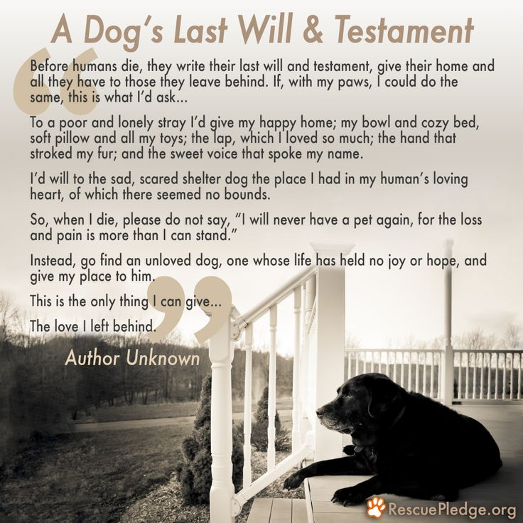 A Dog's Last Will and Testament Rescue PledgeBecause
