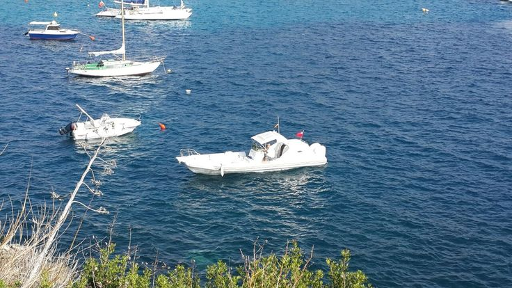 Shimmy Beach Club Team are living the life in Ibiza! shimmybeachclub.com