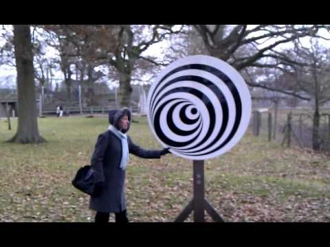 Optical Illusion Disc at Marwell Zoo