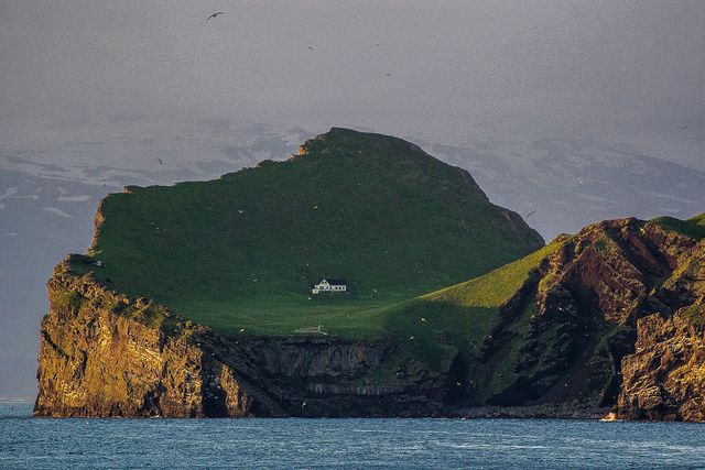 This island is a couple of kilometers off the coast of southern Iceland. The white glittery specks are seabirds. This is around 11pm. Rumor is, it's one of Bjork's houses. All I know for certain is that it's amazing. And that they have to travel far for groceries.