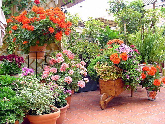 M s de 25 ideas incre bles sobre peque os patios for Paisajismo patios