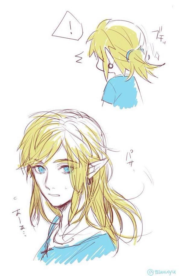 Zelda hentai magna