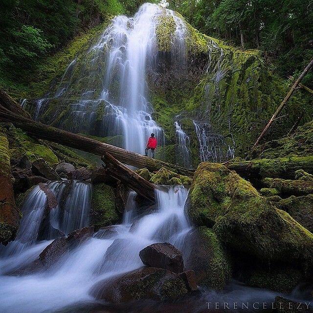 Colorado River Porn - Proxy Falls, Oregon
