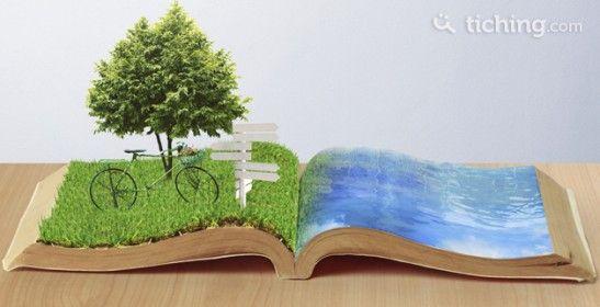7 consejos para practicar la ecología en el aula | El Blog de Educación y TIC
