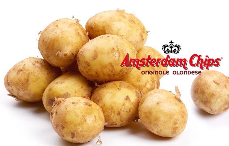 Amsterdam Chips Originale Olandese