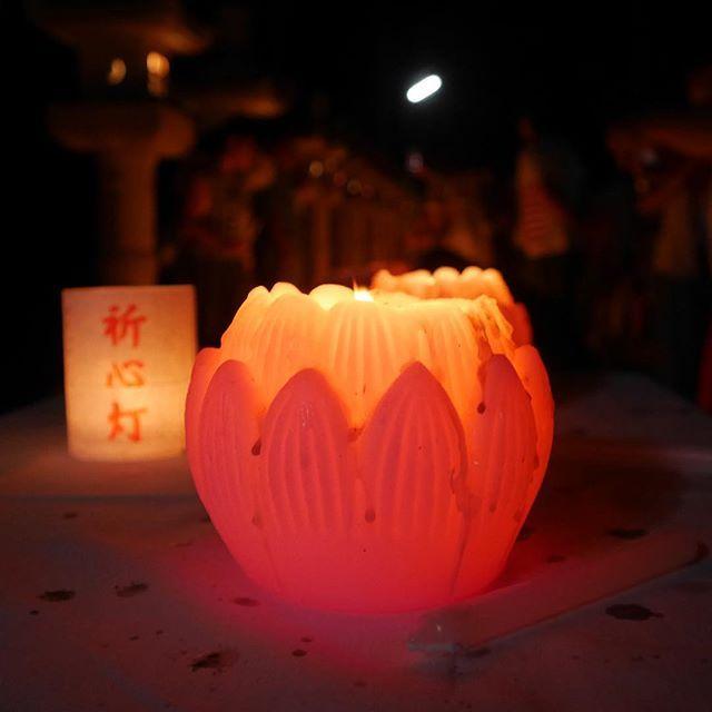 今夜、奥之院は数万のろうそくで照らされました。写真のろうそくは灯籠堂で灯されている不滅の法灯です。これが全ての種火となります。 #高野山 #koyasan #奥之院 #ろうそくまつり #灯 #candle #pray #祈り #お盆  #精霊 #instapic koyasan_nanzanbou 高野山奥之院