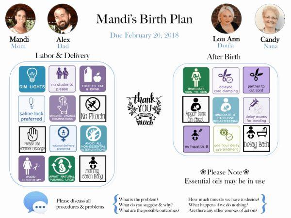 Best Birth Plan Template Inspirational 9 Birth Plan ...