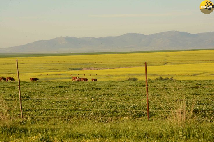 Landscapes... #SCJA @SCJAofficial, #IG @moonlighting_commercials, @AllenIrwin @craigsobotker, @My_Octane Stills by @cousinphotos #MyOctane #landscapephotography #landscapelover #landscape_captures #landscapes #landscape_photography #SouthAfrica #photographyislifee #photographyislife #photographysouls #photographyeveryday #photographylover