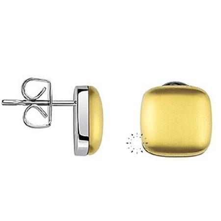 Σκουλαρίκια Placid από ανοξείδωτο ατσάλι της Calvin Klein  56€  http://www.kosmima.gr/product_info.php?manufacturers_id=13_id=17562