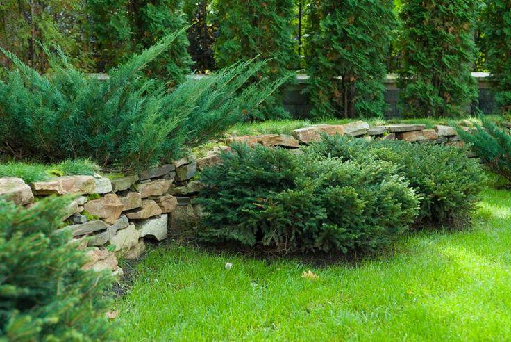 Подпорные стенки в саду являются прекрасным декоративным элементом, предотвращая оползание грунта, если участок имеет склон.