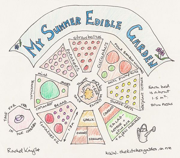 Plan the perfect summer edible garden and plant it right on time. #HandmadeNZ #Wellington