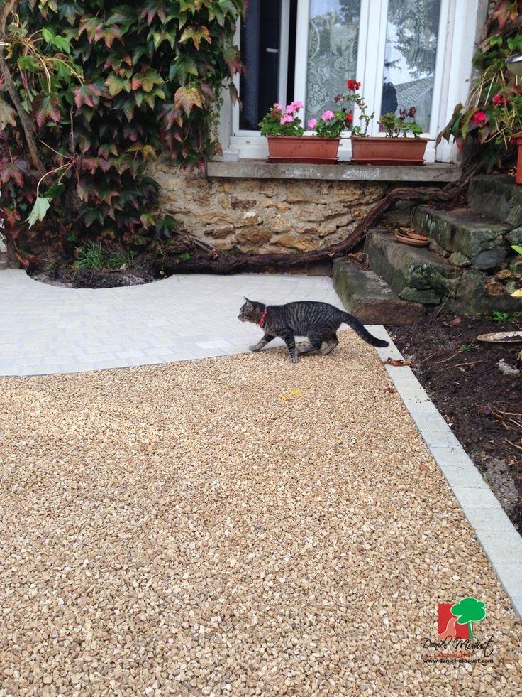 30 best Alvéostar images on Pinterest   Terrace, Gardening and ...