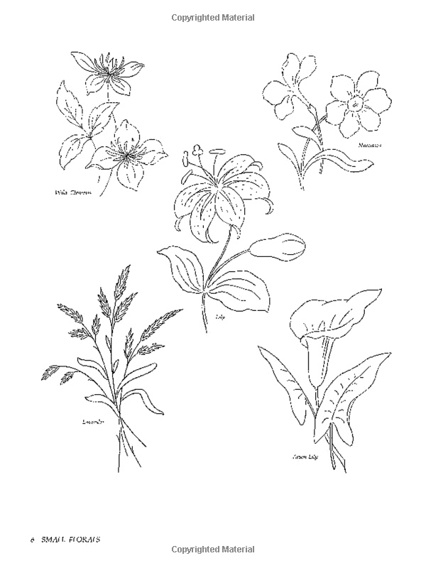 wheat lavender floral drawing embroidery patterns