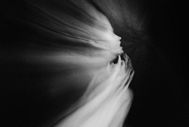 Taida Celi: Favorite Artists, Motion Photography, Dark Photography, Photographers Beauty, Photography Genre, Artsy Photo, Ghosts, Experiments Photography, Taida Celi