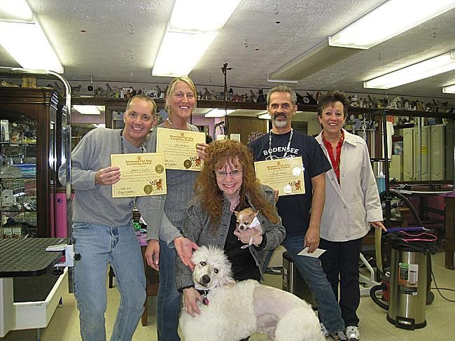 Dog Grooming School Near Me - http://pets-ok.com/dog-grooming-school-near-me-dogs-2612.html
