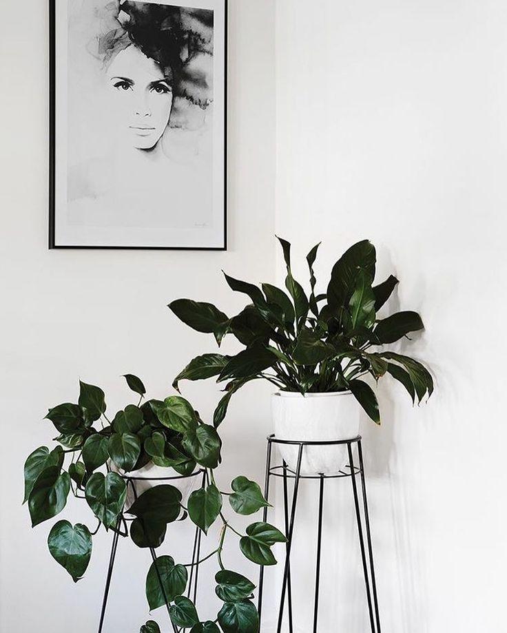 "49 Likes, 5 Comments - make_it_simple (@make_it_simple_ana) on Instagram: ""#design#interiordesign#interior#interiordesigner#simple#дизайн#интерьер#дизайнинтерьера#дизайнинтерьеров#простой#black#черный#fashion#inspiration#вдохновение#grey#white#серый#белый#monohrome#мебель#furniture#home#дом#decoration#homedecoration#minimalism#minimalist#mood#white"""