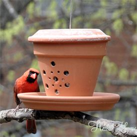 This little DIY bird feeder is made out of a terra cotta flower pot and two saucers! It's easy and your feathered friends will love it!
