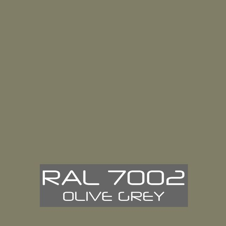 Image result for RAL 7002