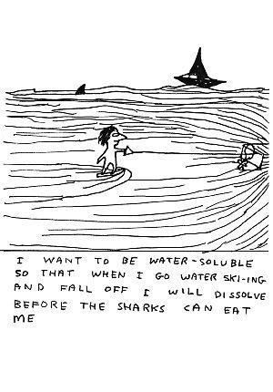 Water-soluble, David Shrigley