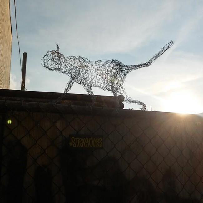 Kedi Sevdalısı Heykeltraş Strayones'tan Tel ile Tasarlanmış Kedi Heykelleri Sanatlı Bi Blog 19