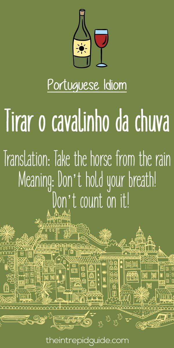 Portuguese phrases  Tirar o cavalinho da chuva