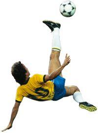 Футбол Бразилии