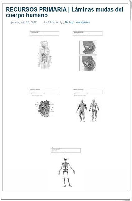 Láminas mudas del cuerpo humano (Laeduteca.blogspot.com.es)
