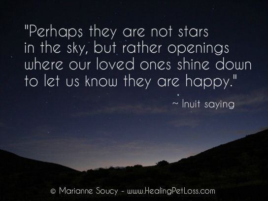 Losing A Loved One Unexpectedly Quotes : Healing Pet Loss Quotes: http://healingpetloss.com/pet-loss-quote ...