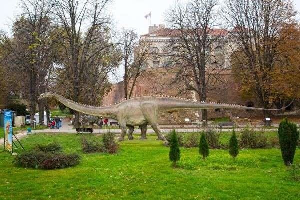 """Dinosaurierpark """"Na Kalemegdanu"""", Belgrad Besucher des Dinosaurierparks """"Na Kalemegdanu"""" im serbischen Belgrad müssen Mut aufbringen, denn es sind nicht nur friedliche Pflanzenfresser wie der Brontosaurus zu besichtigen, sondern auch gefährliche Tiere wie Velociraptoren oder der Tyrannosaurus."""