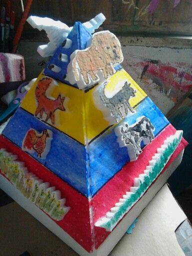 Cadena alimenticia // energy pyramid: flow of energy: food web