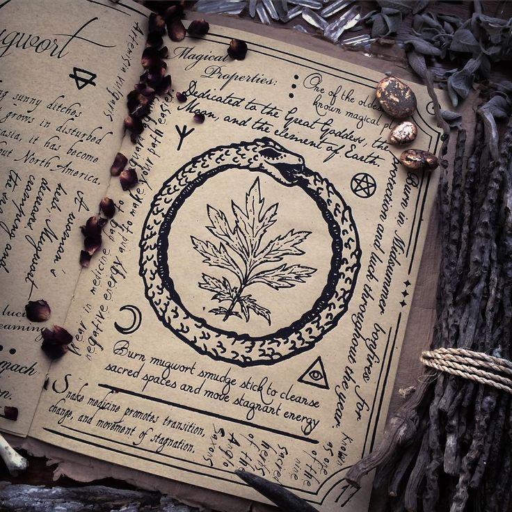 Книги старых ведьм