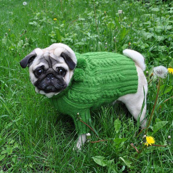 Dog Sweater Knit Dog Sweater Sweater for Pug Clothing for dog Pug coat Pug…