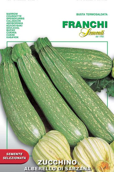 Seeds from Italy - Zucchini Albarello of Sarzana (146-40), $3.15 (http://www.growitalian.com/zucchini-albarello-of-sarzana/)