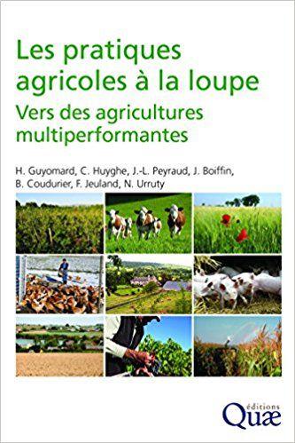 Les pratiques agricoles à la loupe : Vers des agricultures multiperformantes - Collectif, Hervé Guyomard, Christian Huyghe, Jean-Louis Peyraud, Jean Boiffin