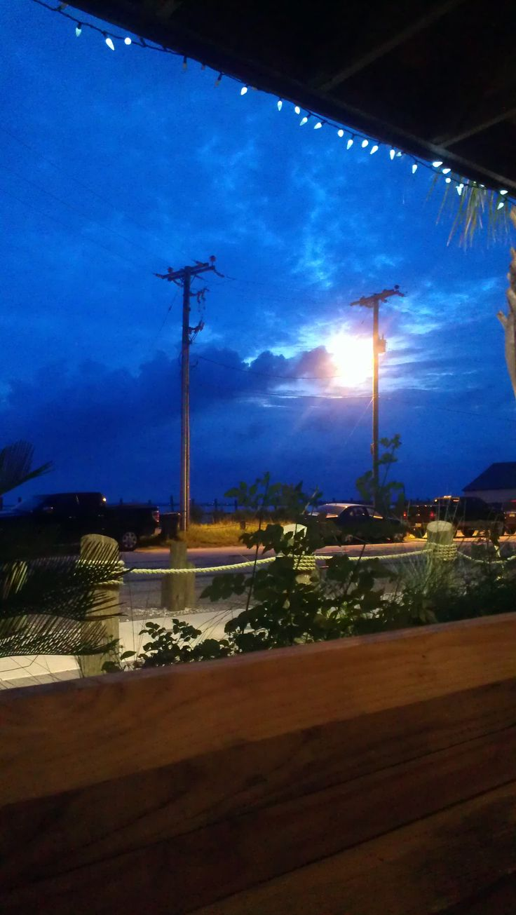 Amelia island christmas tree lighting at amelia island plantation - Blue View From The Salty Pelican Fernandina Beach Fl