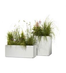 Pflanzkubel Nach Mass Im Greenbop Online Shop Kaufen Pflanzen